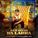 Aam Ghar Ka Ladka Song Lyrics | Lil Golu | Latest Punjabi Song