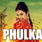 Phulkari Song Lyrics by Kaur B | from Desi Robinhood album