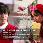 Hua Hai Aaj Pehli Baar (Armaan Mallik) Full Lyrics, Sanam Re Movie Song