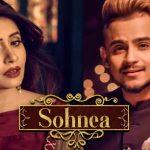 Sohnea (Jinna Mera Tod Da Ae Dil) Lyrics- Miss Pooja Ft. Millind Gaba | Happy Raikoti