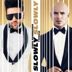 Slowly Slowly Lyrics- Guru Randhawa Ft. Pitbull | T-Series