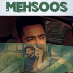 Mehsoos Mainu Ho Gaya Lyrics- Amber Vashisht | New Punjabi Song